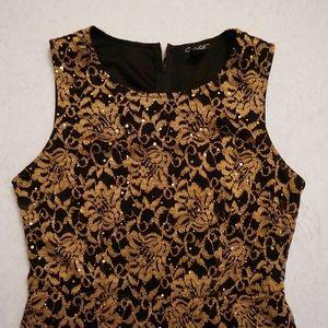 Gorgeous Gold & Black Sleeveless Dress
